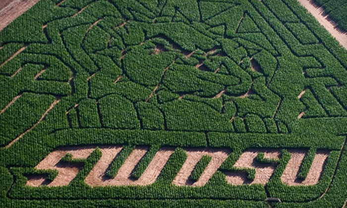 P Bar Farms - Hydro: $8 for a Corn-Maze and Laser-Tag Outing for One at P Bar Farms in Hydro ($16 Value)