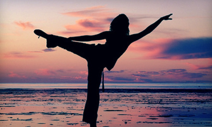 Wellness By All Means - Baylands: 10 or 20 Yoga Classes at Wellness By All Means in Fremont (Up to 87% Off)