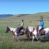 Up to 54% Off Horseback Riding in Littleton