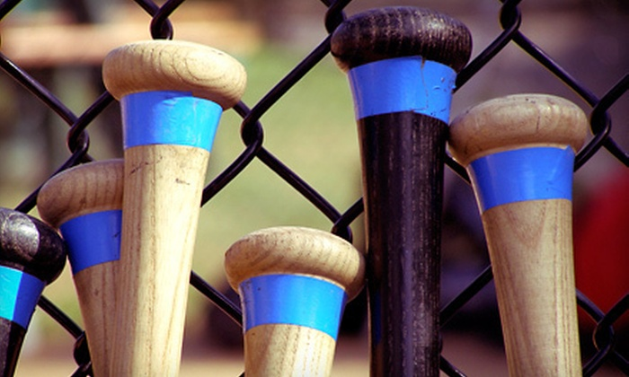 Bash Sports Academy - Chicago: 30- or 60-Minute Batting-Cage Session at Bash Sports Academy (Up to 62% Off)