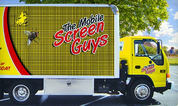 The Mobile Screen Guys - San Jose: Two or Four New Window Screens from The Mobile Screen Guys (Up to 59% Off)
