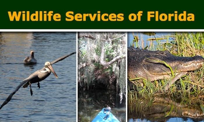 Wildlife Services of Florida - Tampa Bay Area: $15 Half-Day Canoe Trip at Wildlife Services of Florida