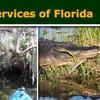 Half Off Wildlife Canoe Trip