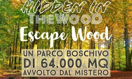 Fino al 20% di sconto su Giochi di Fuga da una Stanza da Hidden in The Wood Escape Wood & Horror Survival