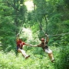 46% Off a Guided Zipline Tour for Two