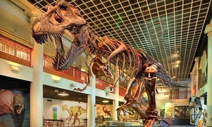 Academy of Natural Sciences - Logan Square: $15 for a Museum Visit for Two at the Academy of Natural Sciences of Drexel University (Up to $30 Value)