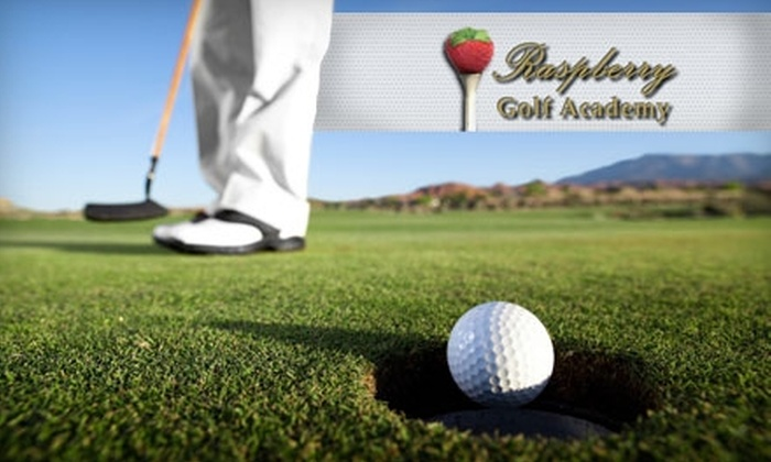 Raspberry Golf Academy - Multiple Locations: $59 for Choice of Lesson, Club Fitting, or Launch-Monitor Session at Raspberry Golf Academy in Leesburg or Woodbridge ($150 Value)