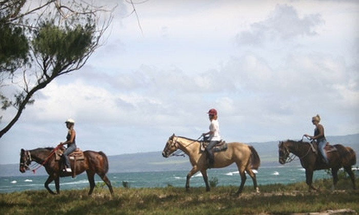 Hawaii Polo Club - North Shore: $47 for an Oceanfront Sunset Horseback Trail Ride at the Hawaii Polo Club in Waialua ($95 Value)