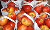 Moms Country Orchards - Yucaipa: $10 for $20 Worth of Local, Organic Produce at Moms Country Orchards in Oak Glen