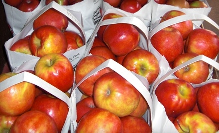 $20 Groupon to Moms Country Orchards - Moms Country Orchards in Oak Glen