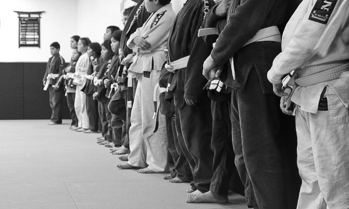 Power Of Leverage Brazilian Jiu Jitsu - Fountain Valley: 10 Brazilian Jiu-Jitsu Classes at Power Of Leverage Brazilian Jiu Jitsu (45% Off)