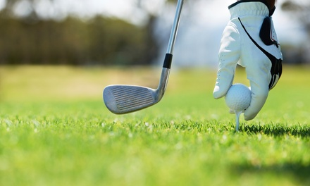 18 Std. DGV-Platzreifekurs für ein oder zwei Personen bei Golf Course Siebengebirge (bis zu 65% sparen*)