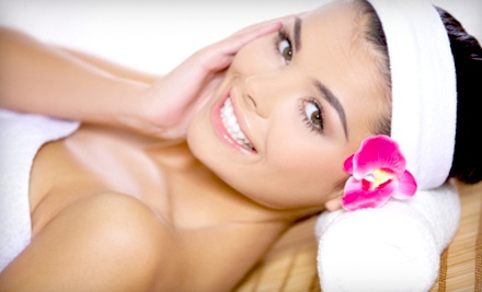 1-Hour Swedish Massage or 1-Hour Facial (a $75 value) - Belle Sante Spa in St. Clair Shores