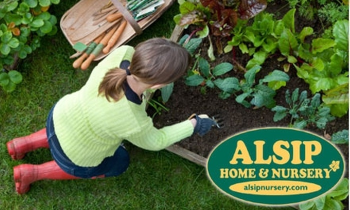 Alsip Home and Nursery - Multiple Locations: $25 for $50 Worth of Plants, Garden Accessories, and More at Alsip Home and Nursery in Frankfort or St. John