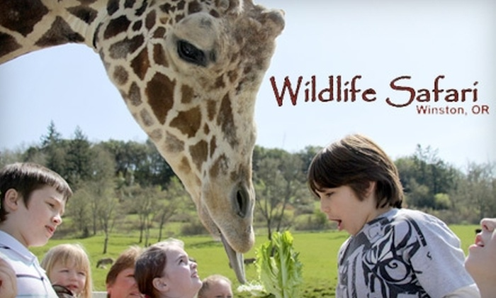 Wildlife Safari - Tenmile: $18 for Two Adult Tickets ($35.98 Value) or $12 for Two Child Tickets ($23.98 Value) at Wildlife Safari in Winston