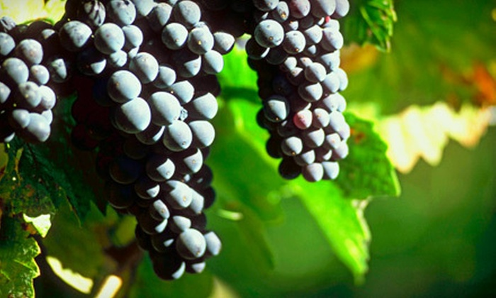 New Jersey Adventure Tours - Parsippany-Troy Hills: Three-Stop Round-Trip Winery Tour for 4, 8, or 12 from New Jersey Adventure Tours (Up to 83% Off)