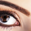 51% Off Eyelash Extensions and Brow Shaping