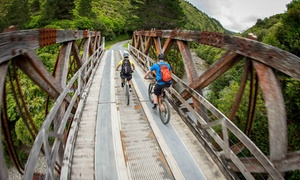 Cycle Rimutaka: $119 for a Mountain Bike Day Trip Including Transport, Bike Hire and Lunch with Cycle Rimutaka