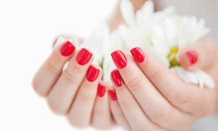 3 o 5 manicure spa con smalto