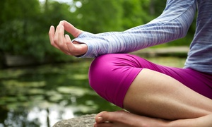 Sacred Soul Yoga: Yoga or Prenatal Yoga Class Packages at Sacred Soul Yoga (Up to 68% Off). Four Options Available.