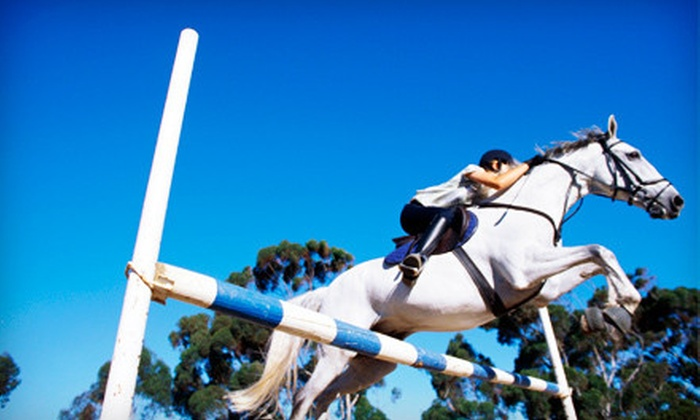 Providence Equestrian Center - Sandy Ridge: $30 for a Group Horseback-Riding Lesson at Providence Equestrian Center in Waxhaw ($65 Value)