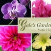 55% Off at Gale's Garden Center