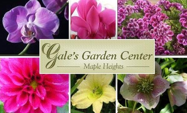 Gales Garden Center