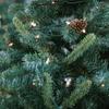 Half Off Freshly Cut Christmas Tree in Mount Vernon