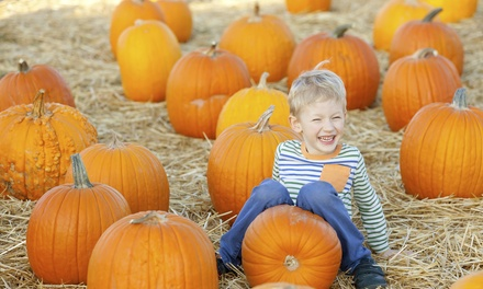 $20 for a Fall-Festival Outing with Activity Bands for Two Adults and Two Children at Tysons Fall Harvest ($38 Value)