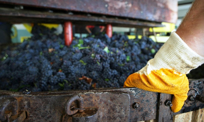 F.H. Steinbart Co. - Buckman: 90-Minute Winemaking Class with Tasting for One or Two at FH Steinbart Co. (Half Off)