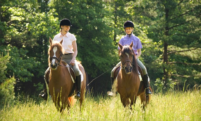 Chain O' Lakes State Park Riding Stable - Spring Grove: Horseback Riding for Two from Chain O' Lakes State Park Riding Stable in Spring Grove. Three Options Available.