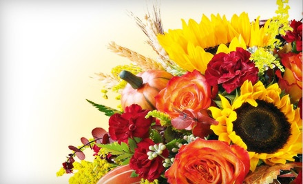 $40 Groupon to Ruth Messmer Florists - Ruth Messmer Florists in Fort Myers