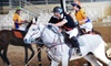 Wrightway Polo - Burbank: $50 for Private Polo Lesson at Wrightway Polo in Burbank ($125 Value)