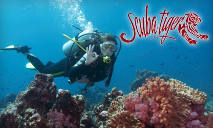 Scuba Tiger - Bellair-Meadowbrook Terrace: $45 for Try Scuba Course at Scuba Tiger ($99 Value)