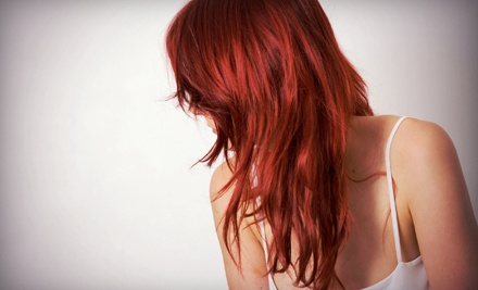 Womens Haircut, Blow-Dry, and Style (a $50 value) - D'Aversa Salons in Long Beach