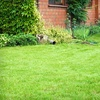 51% Off Lawn Analysis and Care