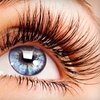 Up to 53% Off Extensions at B-Lashes in Gahanna