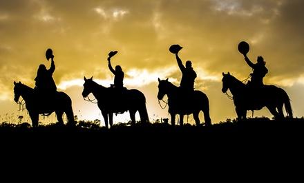 Paseo nocturno a caballo para 2 personas con bombones y botella de cava por 34,95 € en Dehesa del Pardo