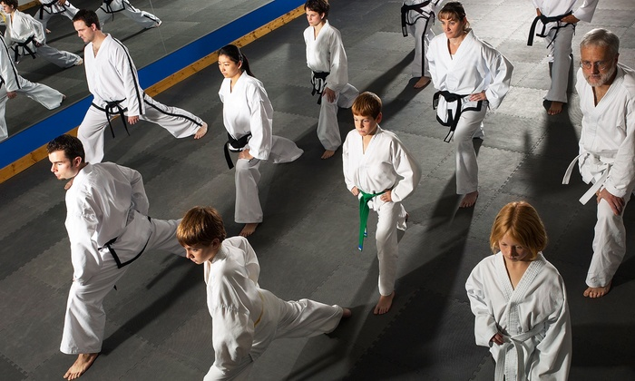 Dong's Karate School-Midlothian (Brandermill Woodlake) - Brandermill: One Month of Unlimited Classes or 10 Drop-In Classes at Dong's Karate School- Midlothian (Up to 90% Off)