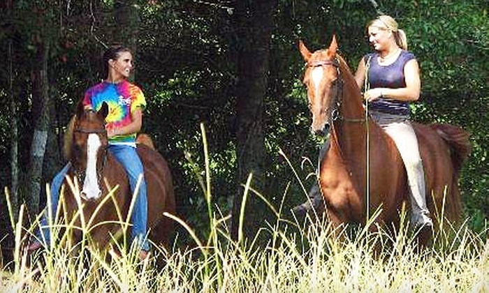 Pine Haven Stables & Riding Academy - Waynesville: Horseback-Riding Lesson or Day Camp at Pine Haven Stables & Riding Academy in Brunswick