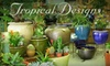 Half Off Flowers & More at Tropical Designs