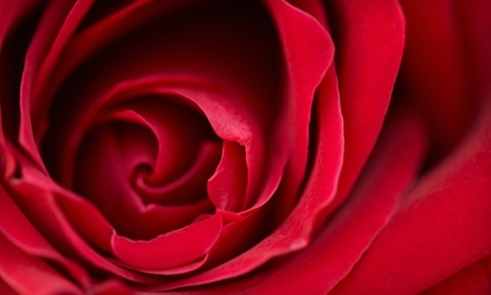 Flowers by Coley - Allied Gardens: $29 for a Dozen Roses at Flowers by Coley ($64.95 Value)