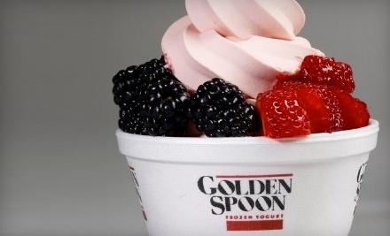 Golden Spoon Frozen Yogurt - Golden Spoon Frozen Yogurt in Broomfield