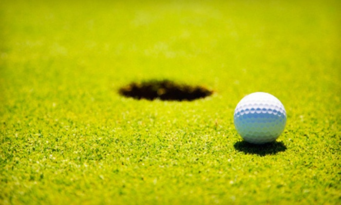 OzGolf - Northampton: One or Three Private Golf Lessons at OzGolf in Ivyland (Up to 70% Off)