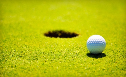 One 60-Minute Private Golf Lesson (a $100 value) - OzGolf in Ivyland