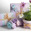 Pre-Seeded Wildflower Wrapping Paper (4-Count)