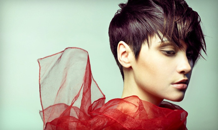 Hair Tech III - Northrich: Haircut with Styling and Optional Partial or Full Highlights at Hair Tech III (Up to 65% Off)
