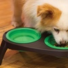 Pets at Play Collapsible Pet Feeder with Bowls
