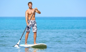 Motion Boardshop: Two-Hour Stand-Up Paddleboard Rental for One or Two with Option for Custom T-Shirt at Motion Boardshop (Up to 60% Off)