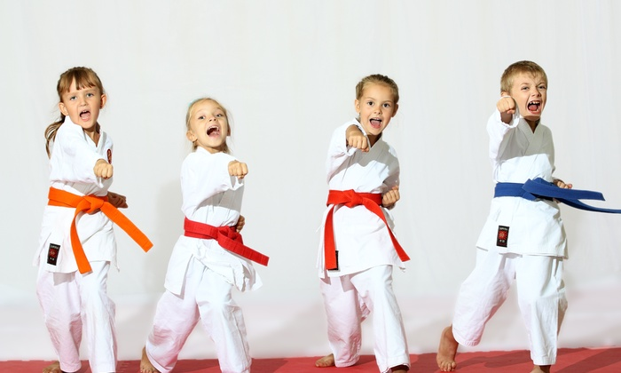 Valley Karate - Shelton: $72 for $130 Groupon — Valley Karate